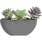 Bloem Bodye Half Moon 11 In. x 3.75 In. Plastic Charcoal Planter Image 1