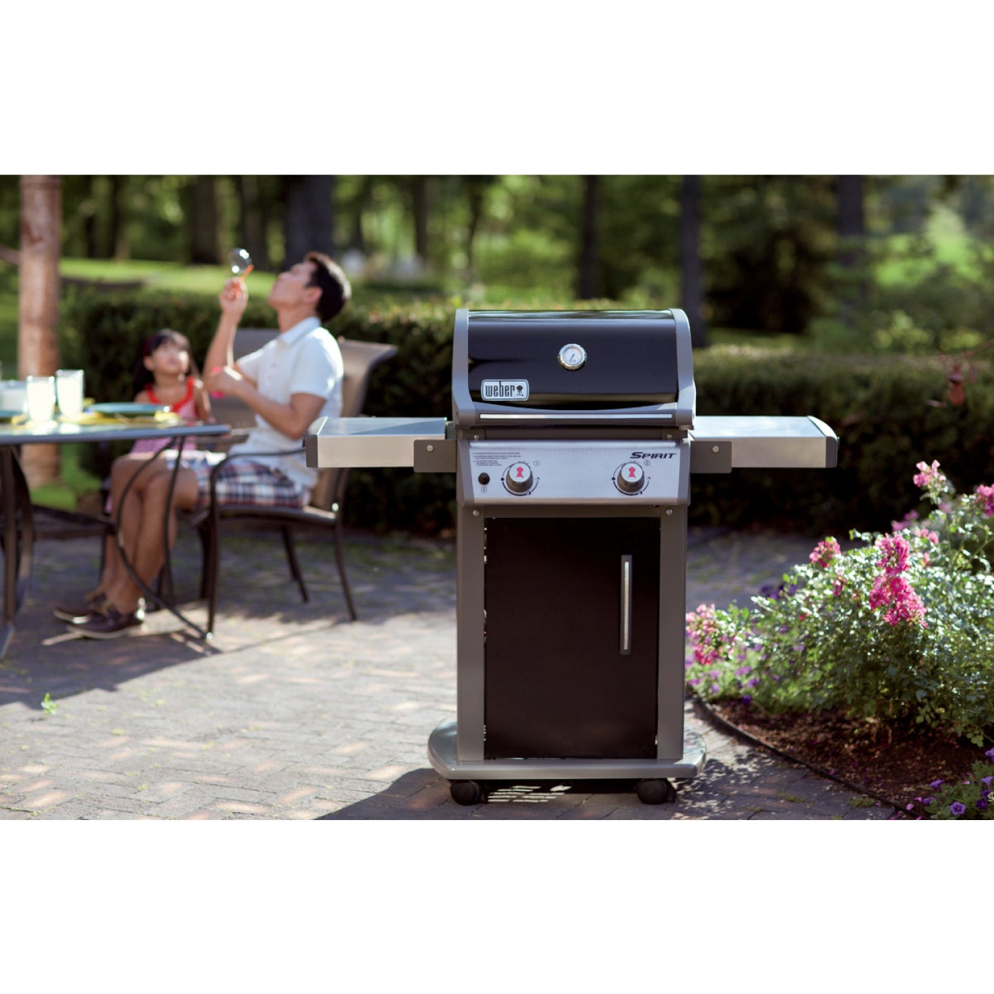 Weber Spirit E-210 2-Burner Black 26,500-BTU LP Gas Grill Image 2