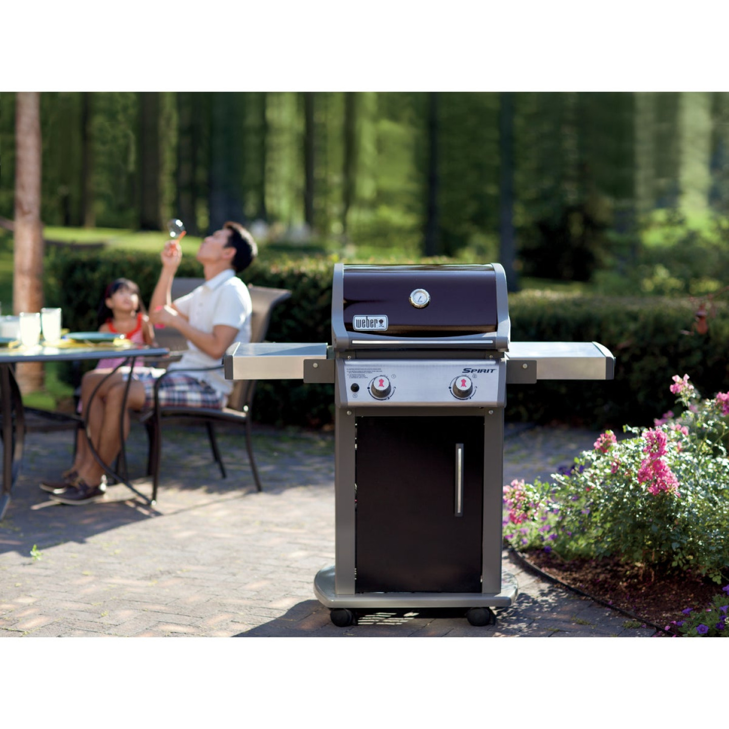 Weber Spirit E-210 2-Burner Black 26,500-BTU LP Gas Grill Image 3